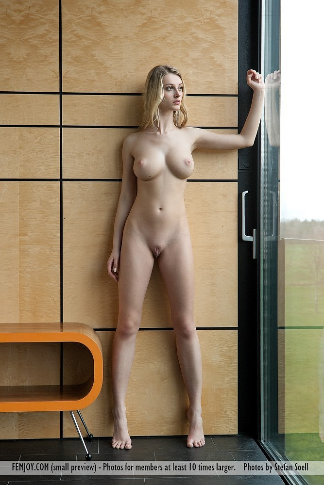 naked girl in window